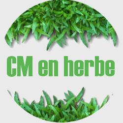 Nos projets : Les Strat'CM, par CM en herbe